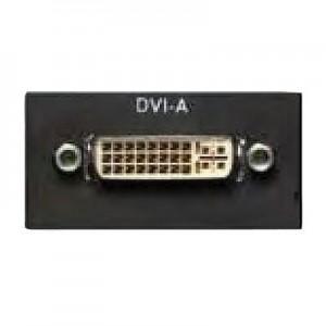 Multimedia DVI Modul für EVOline Port / Dock, 1x DVI Buchse, inkl. 3 m Anschlusskabel